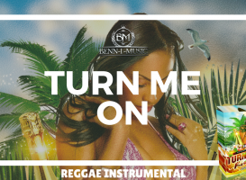 Turn Me On Riddim - Reggae Dancehall Instrumental Beat Riddim